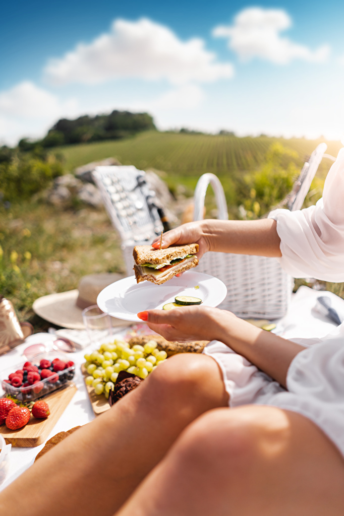 Pictures Picnic blurred background Sandwich Butterbrot Food Hands Plate  for Mobile phone Bokeh