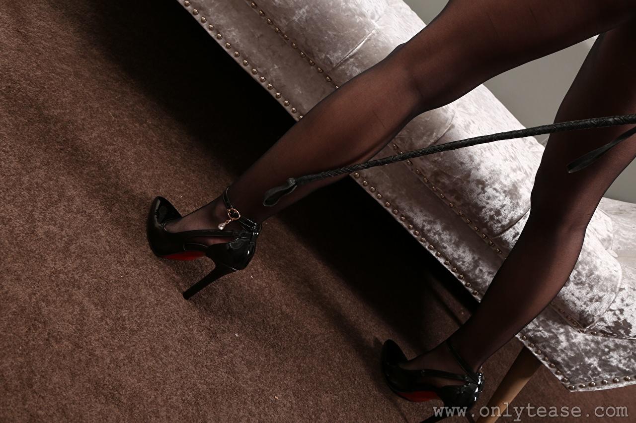 Fotos von Strumpfhose Mädchens Bein Großansicht Stöckelschuh junge frau junge Frauen hautnah Nahaufnahme High Heels