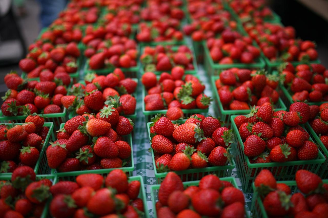 Sfondi sfondo sfocato Rosso Cesto Cibo molti Bokeh alimento Molte