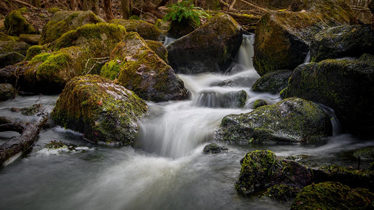 Photo Sweden brook Nature Moss stone Creek Creeks Stream Streams Stones