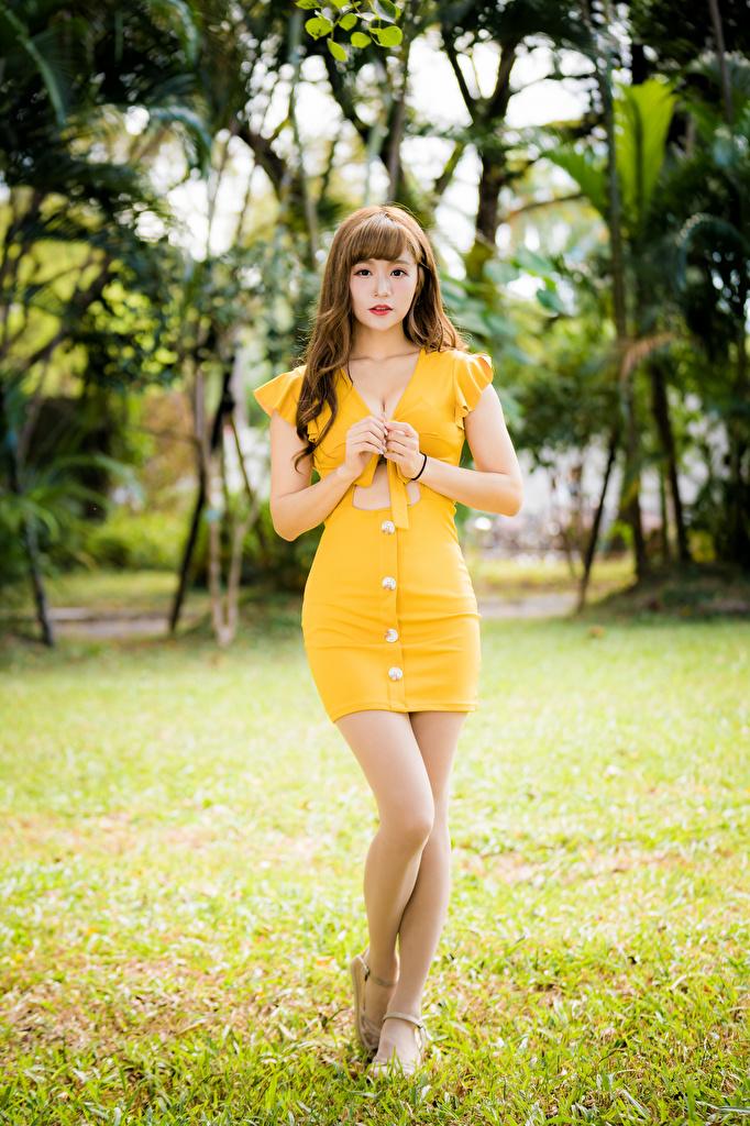 Desktop Hintergrundbilder Mädchens Bein Asiatische Starren Kleid  für Handy junge frau junge Frauen Asiaten asiatisches Blick
