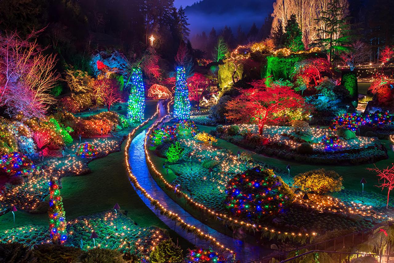 Bilder Kanada Neujahr Butchart Gardens Natur Tannenbaum Garten Nacht Lichterkette Bäume Feiertage Christbaum Weihnachtsbaum