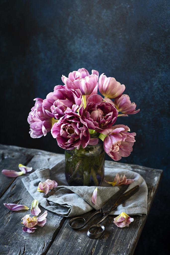Hintergrundbilder Tulpen kronblätter Blumen Blütenblätter