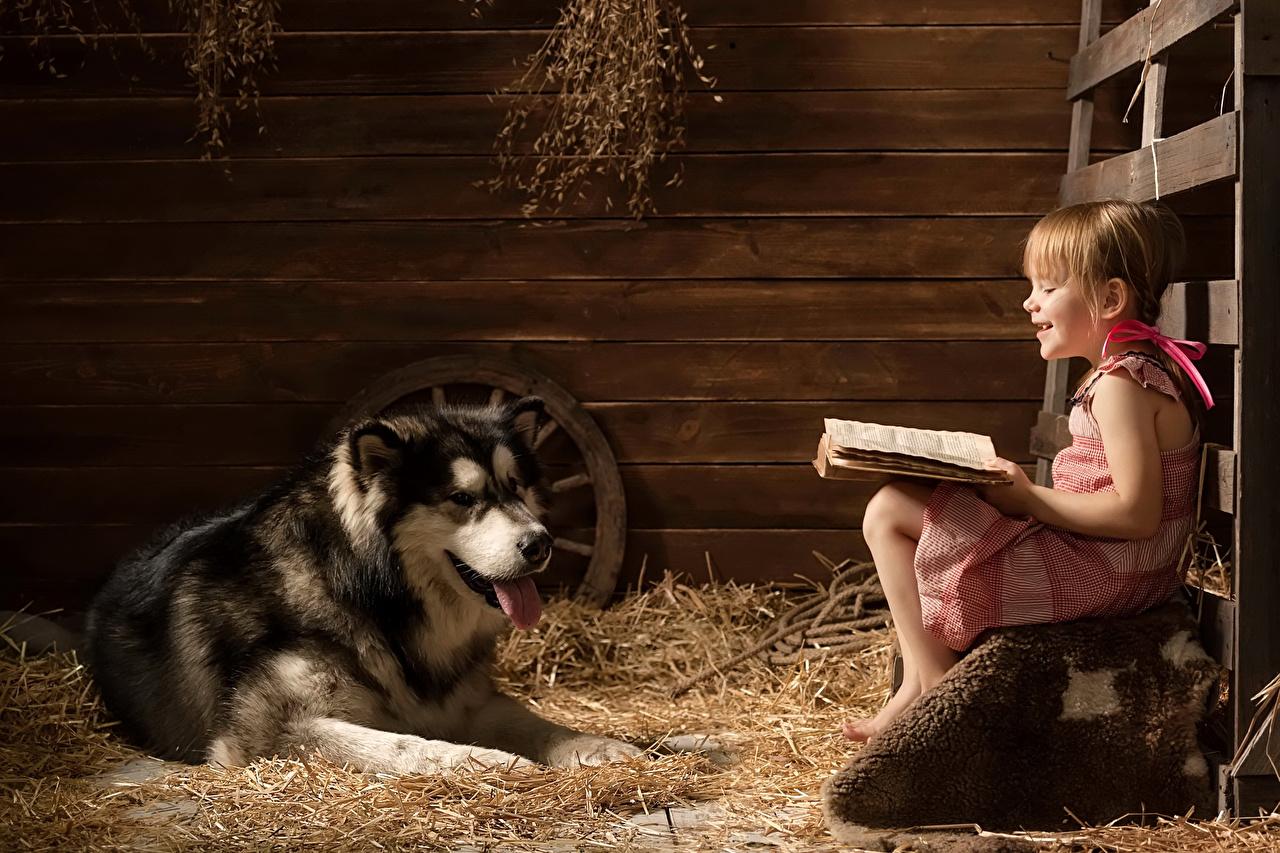 Photo Animals Husky Little girls dog Smile read Book Sitting child animal Dogs Reading sit books Children