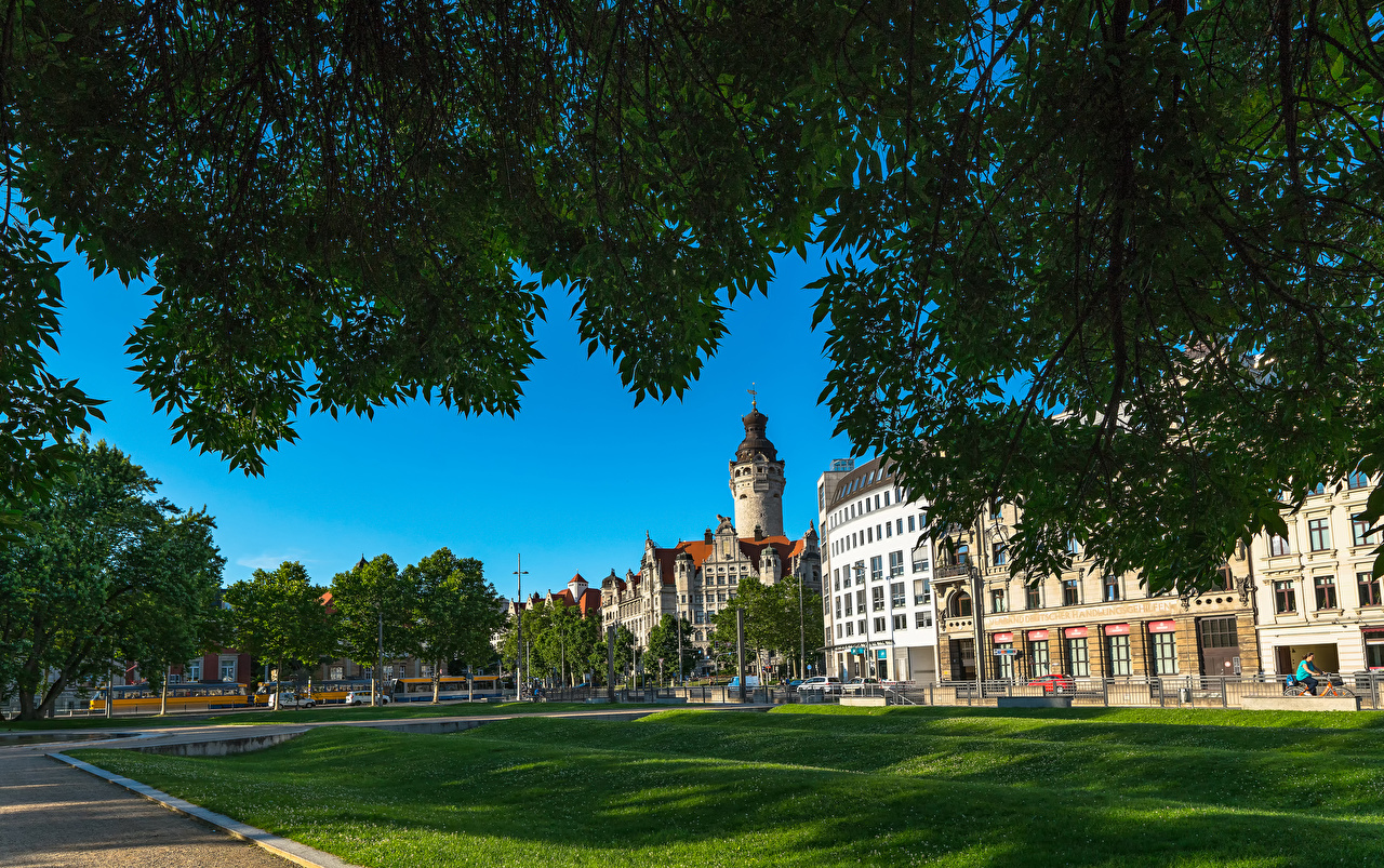 Image Germany Leipzig Street Lawn Branches Houses Cities Building