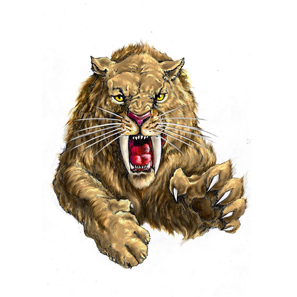 Картинка Smilodon fetalus Зубы Оскал Прыжок Усы Вибриссы Животные Рисованные Древние животные злой рычит злость прыгает прыгать в прыжке животное