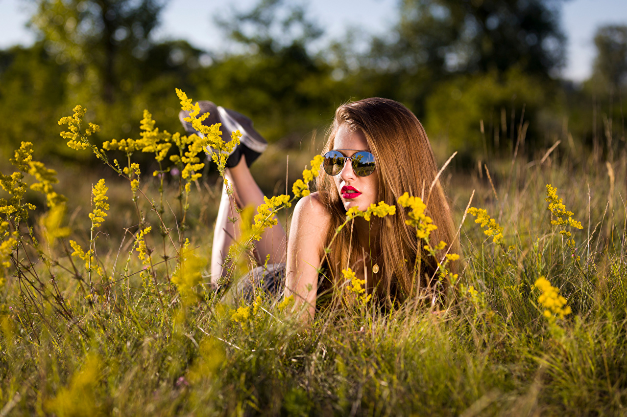 Picture Brown haired esting blurred background Girls Grass Glasses laying Lying down Bokeh female young woman eyeglasses