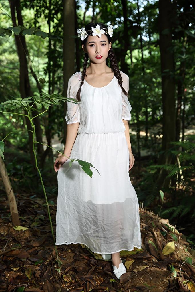 Bilder Brünette Zopf Kranz junge Frauen Asiatische Kleid  für Handy Mädchens junge frau Asiaten asiatisches