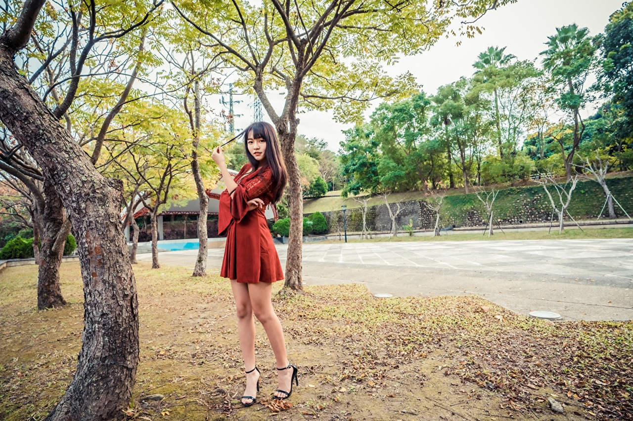 Picture Girls Legs Asian Trees gown female young woman Asiatic frock Dress