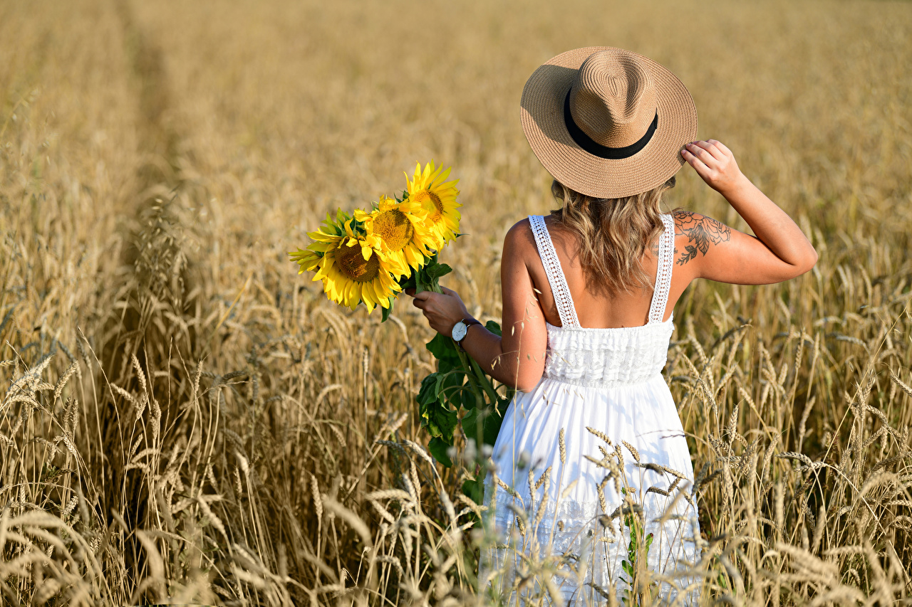 Photos Blonde girl Selina bouquet Hat Girls Fields Helianthus Back view Dress Bouquets female young woman Sunflowers gown frock