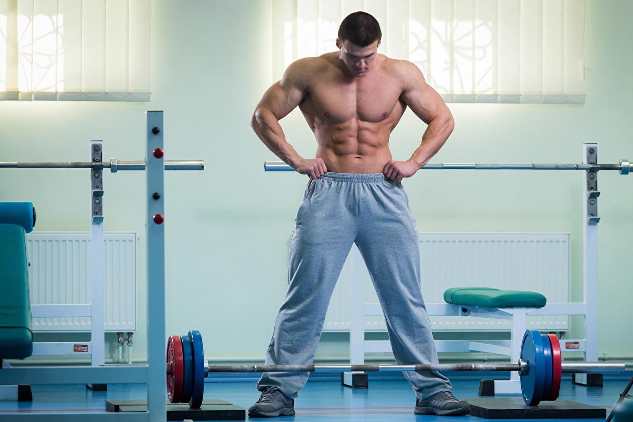 Bilder von Mann Muskeln Fitnessstudio sportliches Hantelstange Bauch Turnhalle Sport
