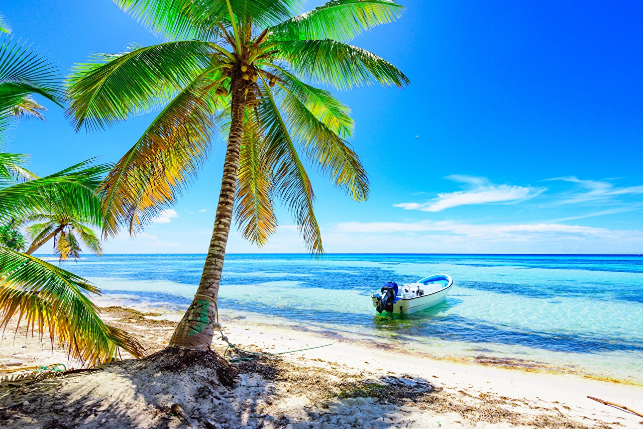 Hd Tropical Island Beach Paradise Wallpapers And Backgrounds: Photos Beach Sea Nature Tropics Palm Trees Boats Trees