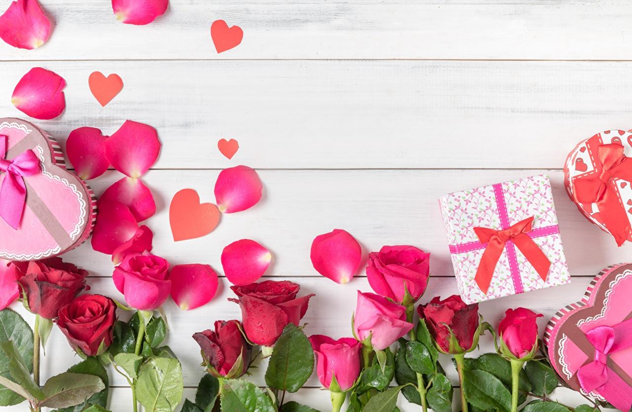 Wallpaper rose Petals Flowers Template greeting card Wood planks Roses flower boards