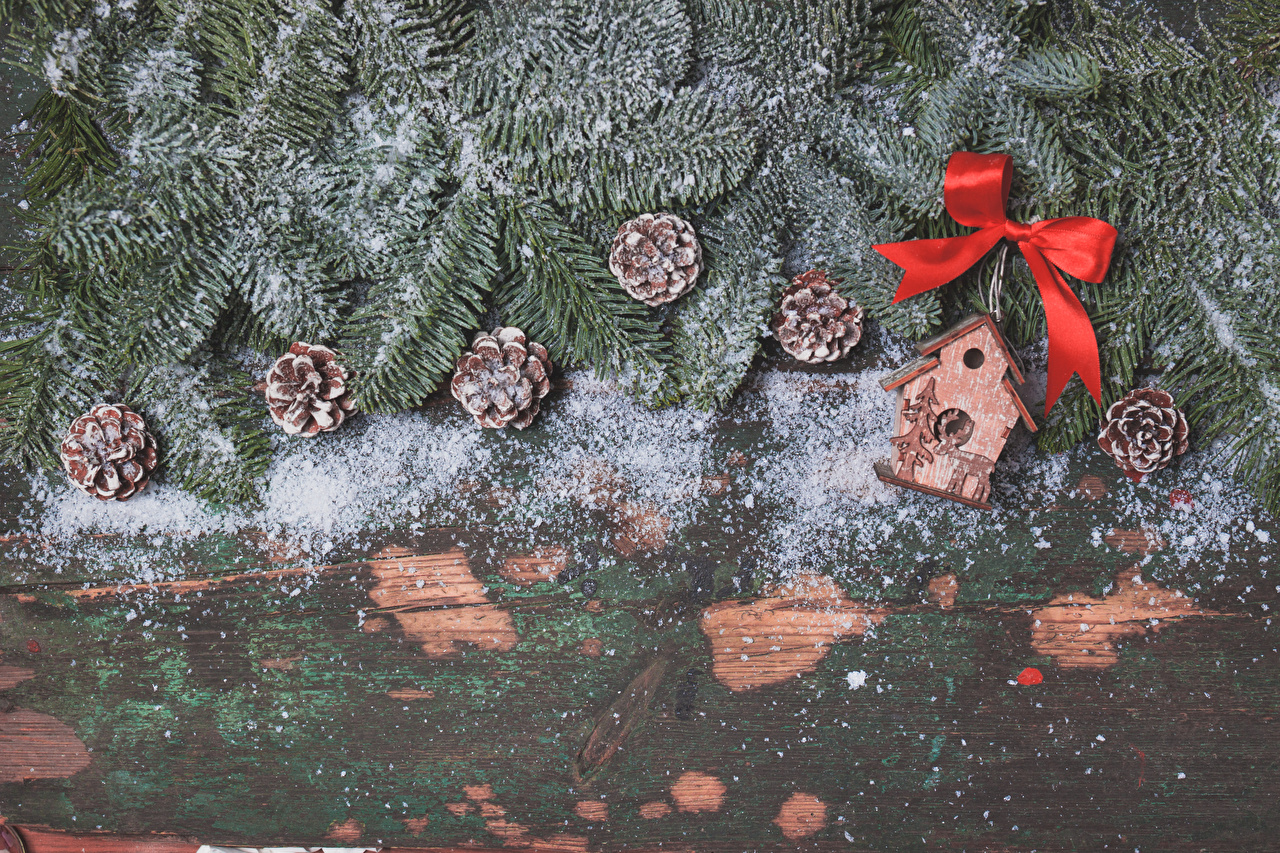Bilder Neujahr Schnee Ast Zapfen Schleife Bretter