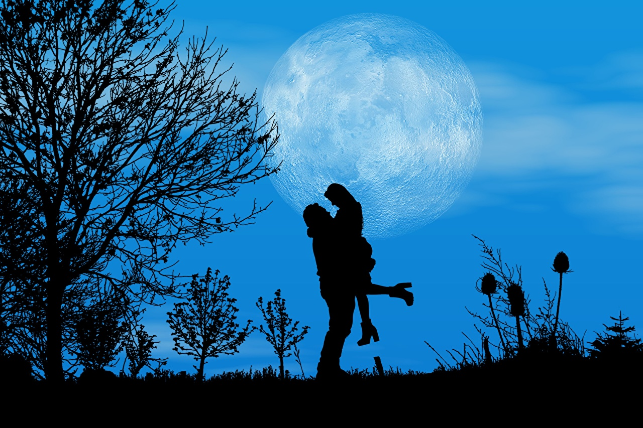 Photo Dating Silhouette Two Love Nature Moon Night Trees