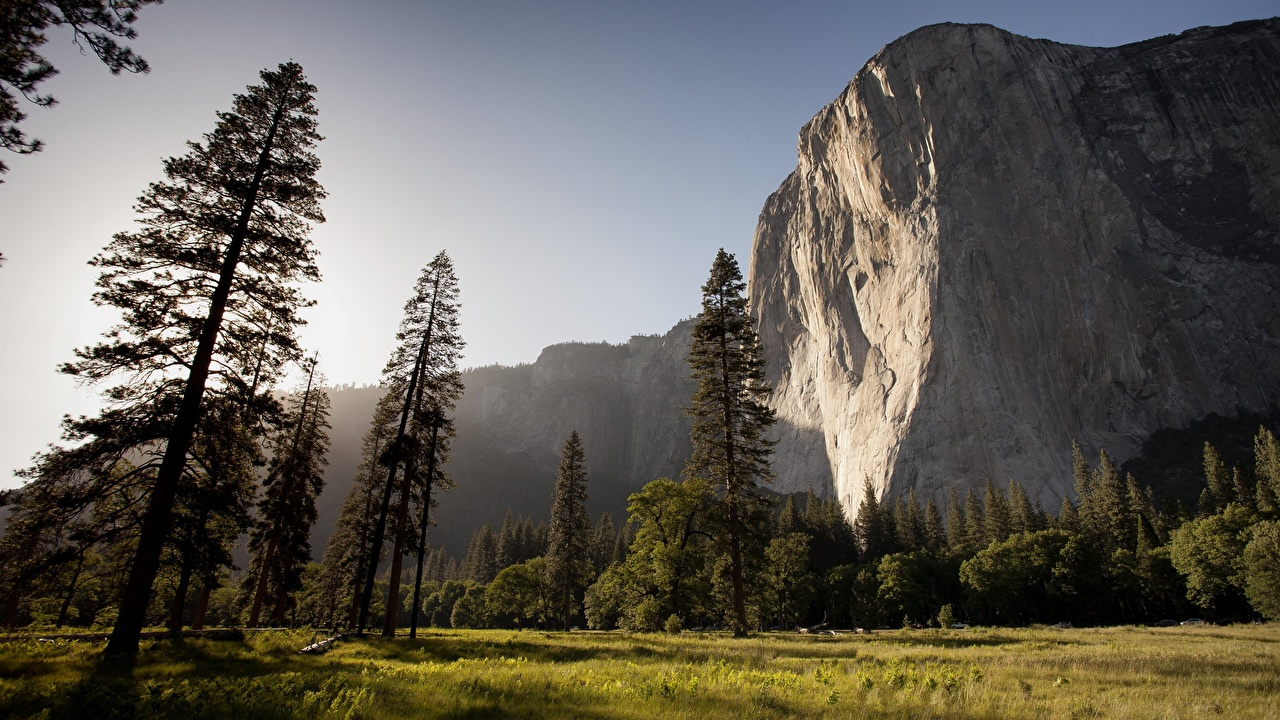 Pictures Yosemite California USA Crag Nature Parks Grass Trees Rock Cliff park