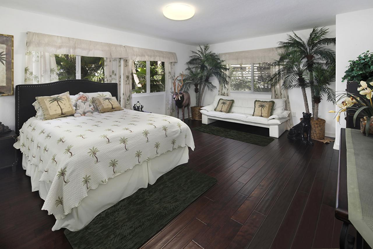 Fotos von Schlafkammer Innenarchitektur Sofa Bett Kissen Design