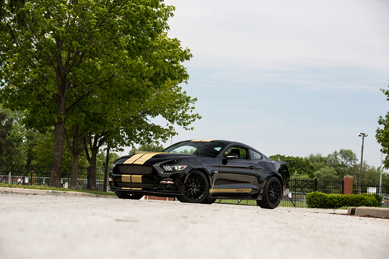 Photo Ford Tuning 2016 Shelby GT-H Black Cars auto automobile