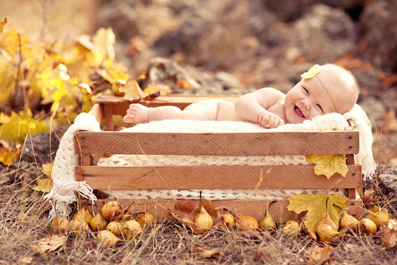 Fonds d'ecran Automne Bébé Enfants télécharger photo