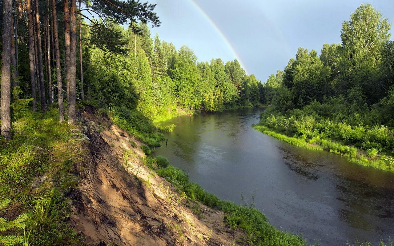 、川、森林、風景写真、虹、自然、