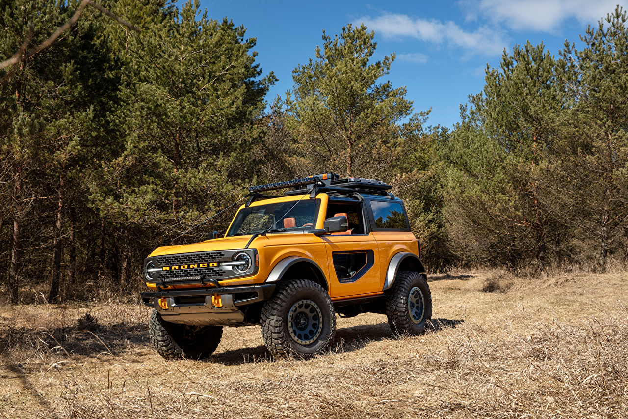 Photos Ford SUV Bronco 2, Door Preproduction, 2020 Yellow auto Trees Sport utility vehicle Cars automobile