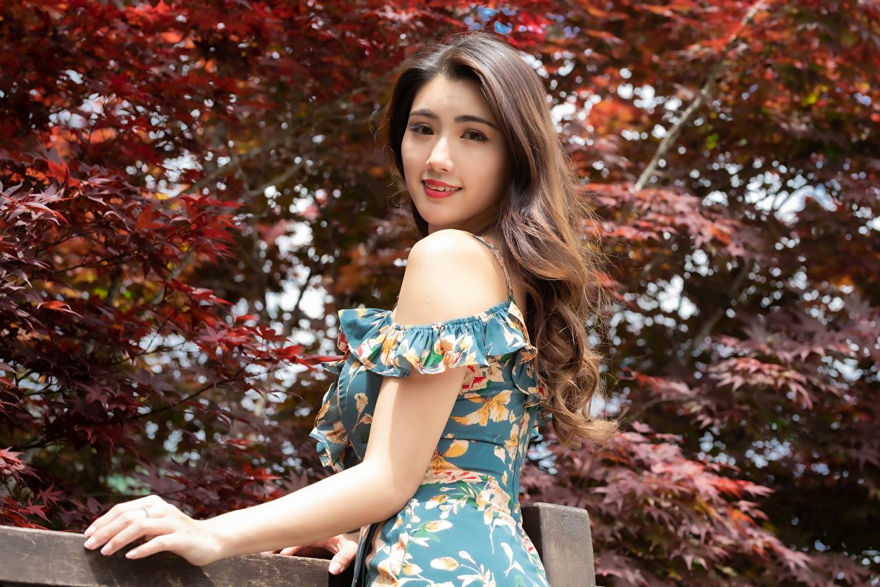 Fotos Braune Haare posiert junge Frauen Asiaten Starren Kleid Braunhaarige Pose Mädchens junge frau Asiatische asiatisches Blick