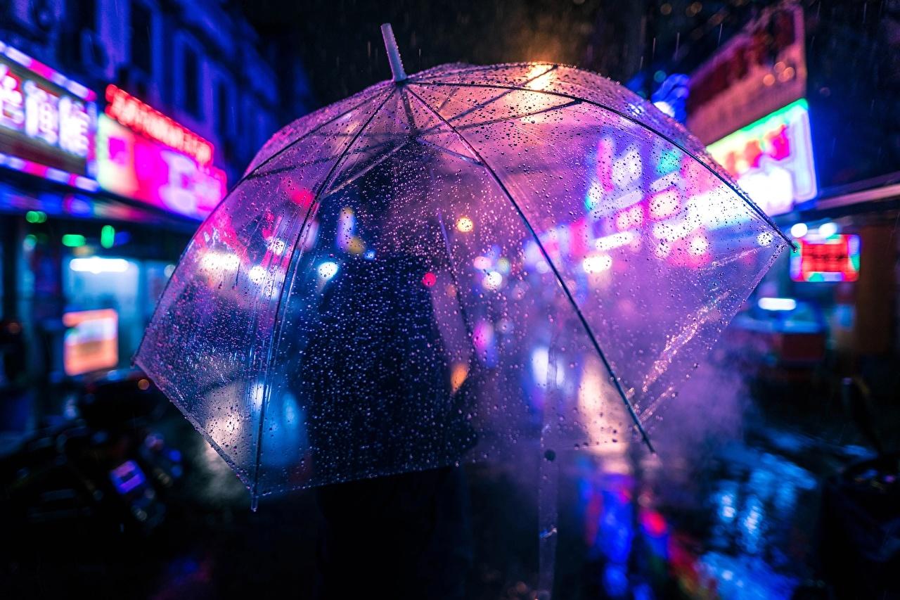 Bilder von Tropfen Nacht Regenschirm Nahaufnahme hautnah Großansicht