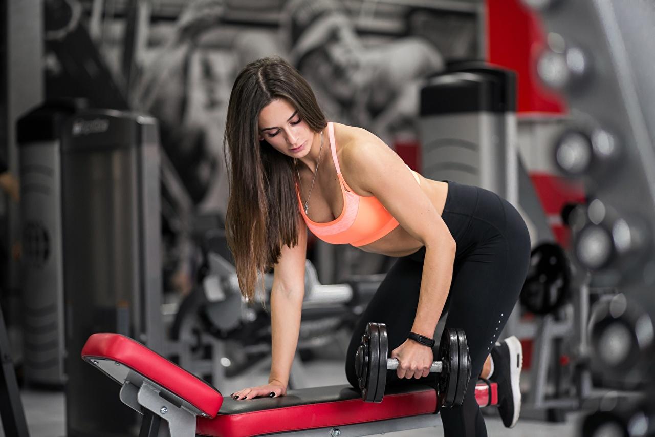 Fotos von Braunhaarige Körperliche Aktivität Pose Fitness Hantel Mädchens Hand Braune Haare Trainieren posiert Hanteln junge frau junge Frauen