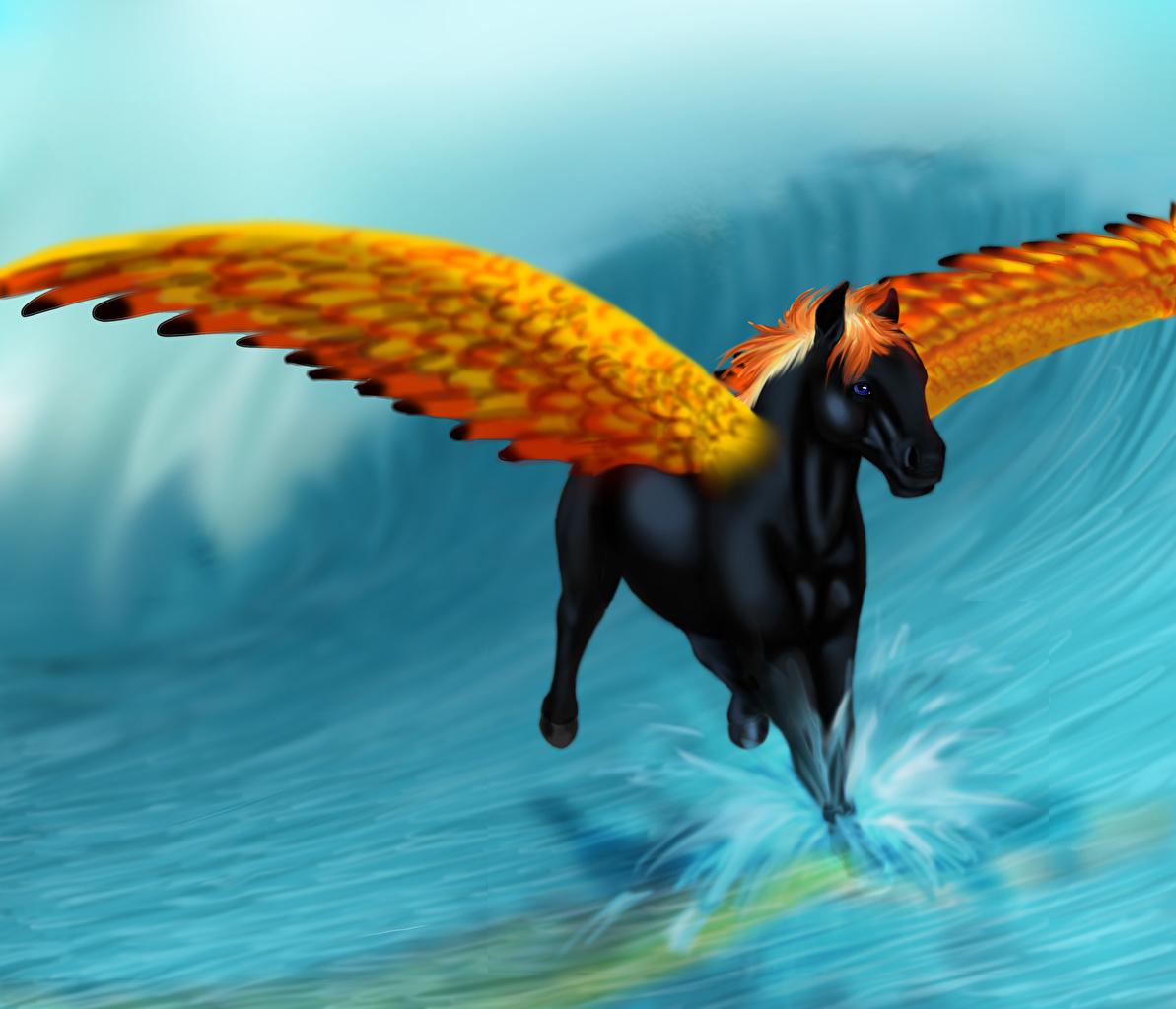 Wallpaper Pegasus Fantasy Magical Animals