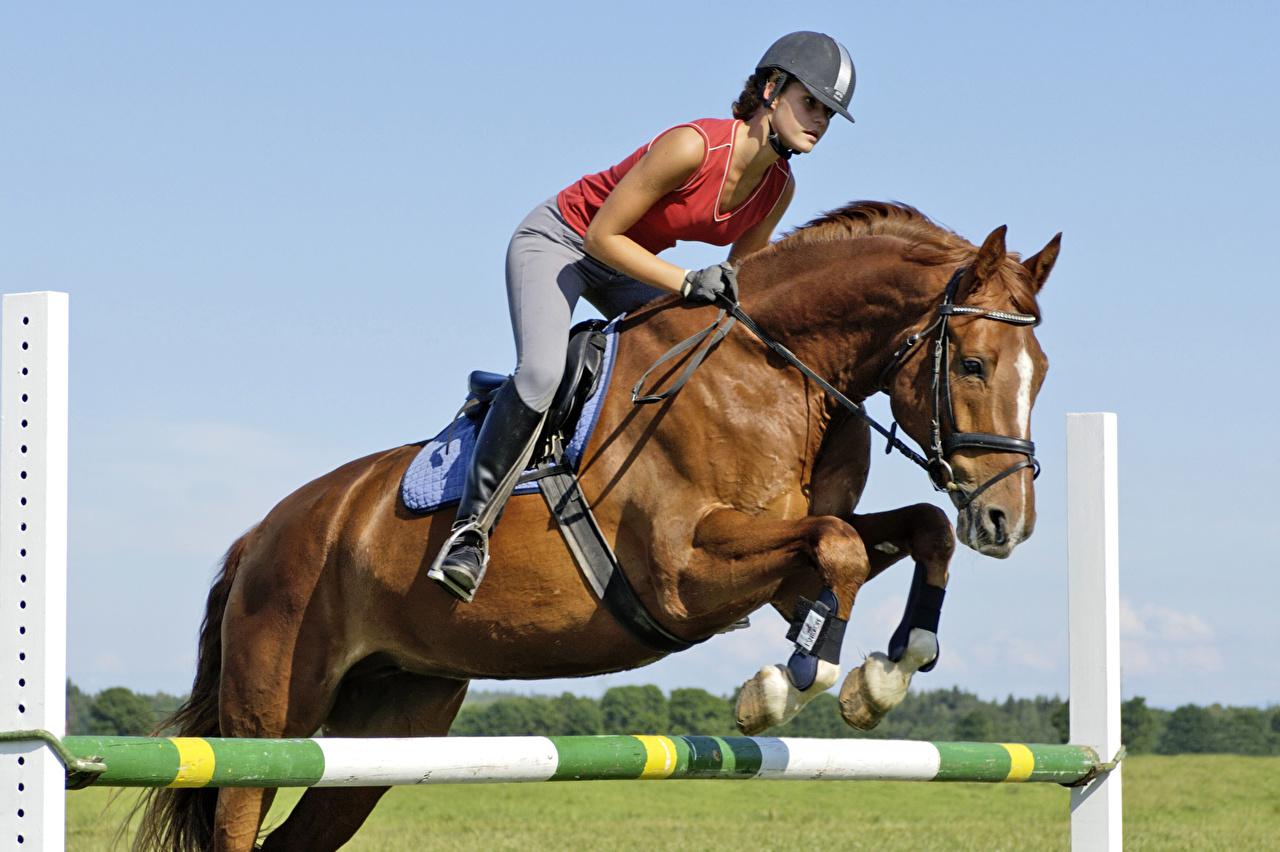 Fotos Pferde Mädchens Pferdesport sportliches Sprung Pferd Hauspferd Sport junge frau junge Frauen