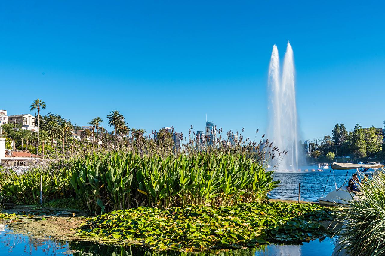 壁紙 アメリカ合衆国 公園 噴水 Echo Park Lake ロサンゼルス カリフォルニア州 自然 ダウンロード 写真