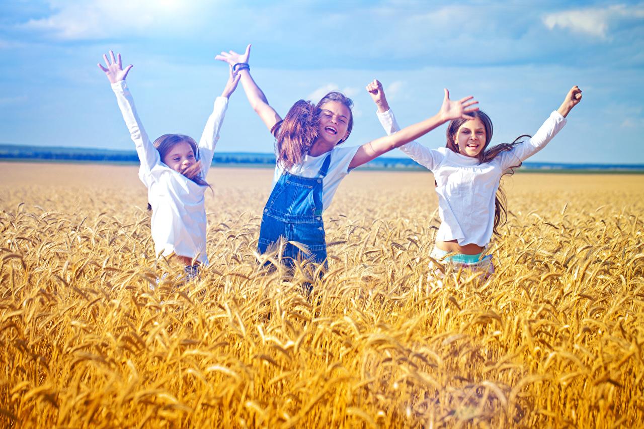 Pictures Little girls Joy Children Fields Ear botany Hands Three 3 happy joyful child spike spikes