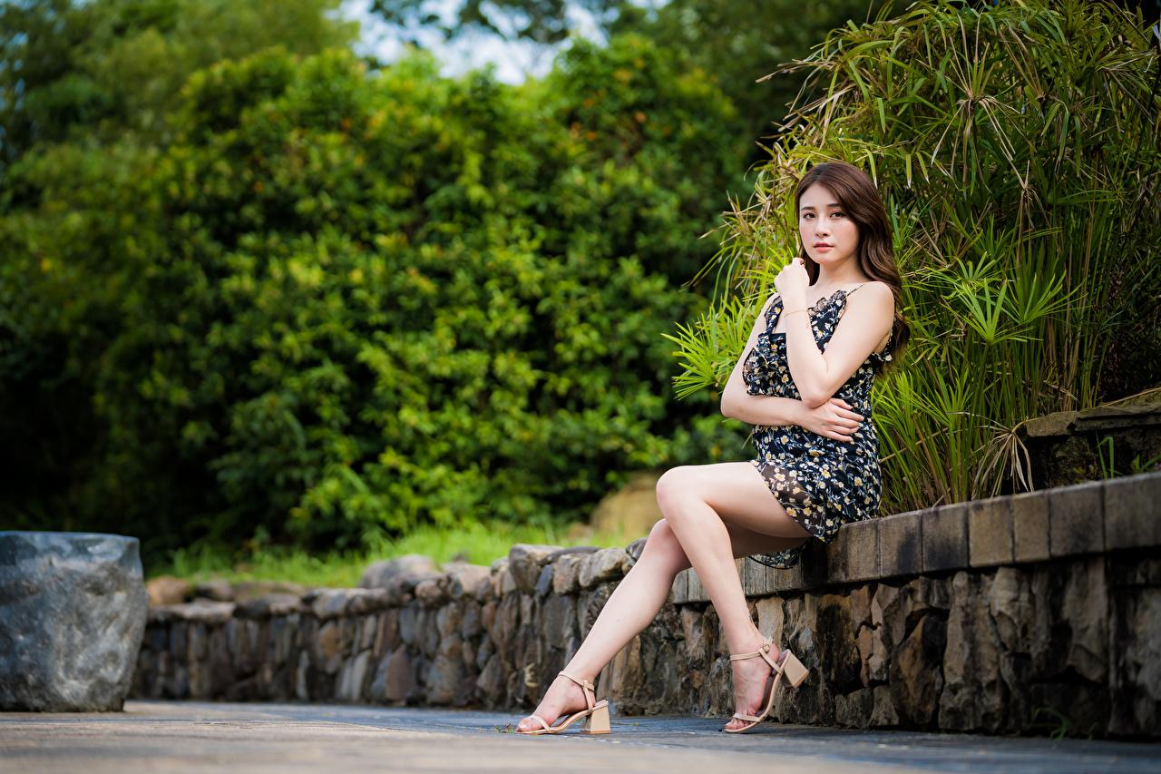 Bakgrunnsbilder ung kvinne Ben Asiater Sitter ser Kjole Unge kvinner asiatisk Blikk