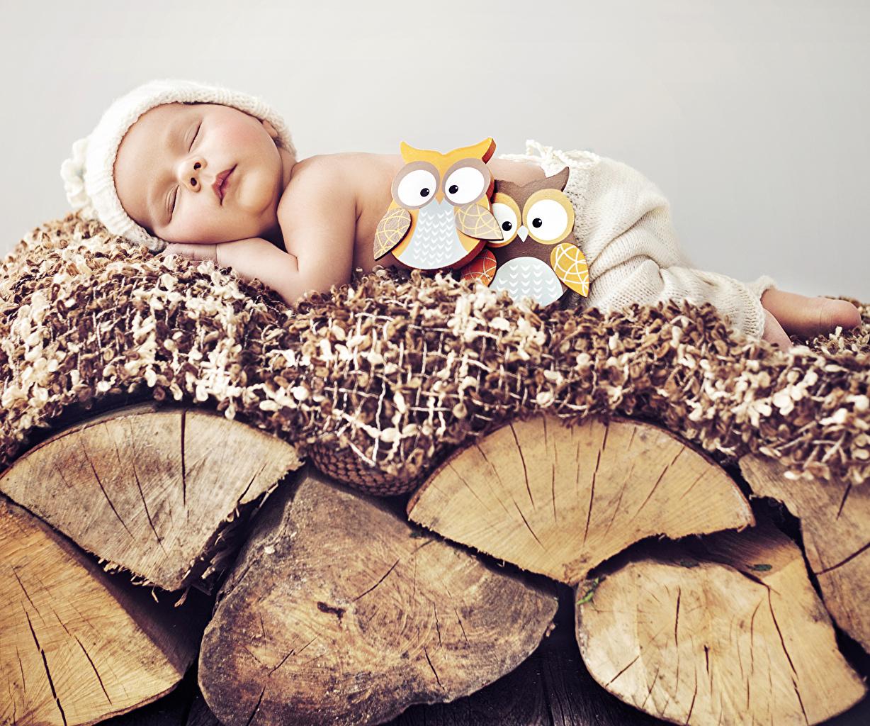 Images bird newborn Children sleeping Winter hat toy Baby Birds Infants child Sleep Toys