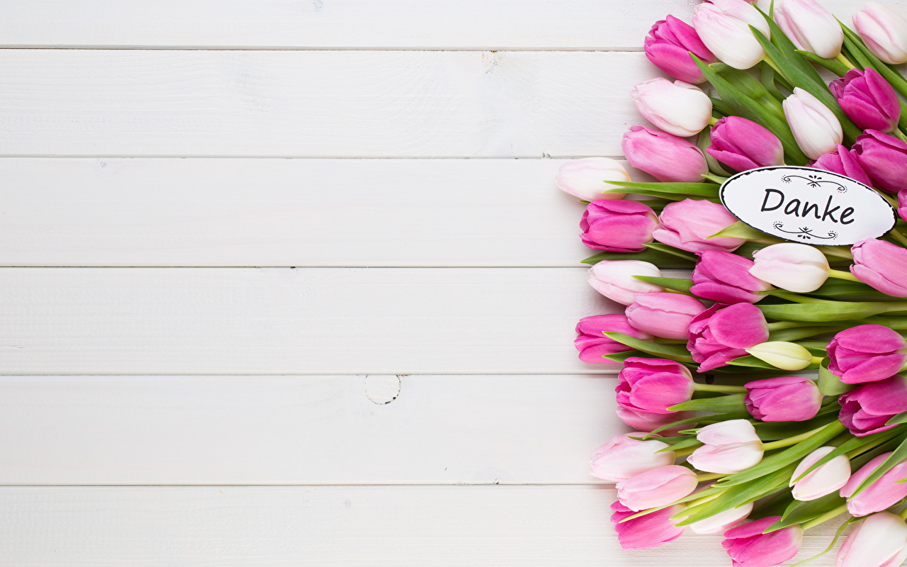 Photos German bouquet Tulips flower Word - Lettering Template greeting card boards Bouquets tulip text Flowers lettering Wood planks