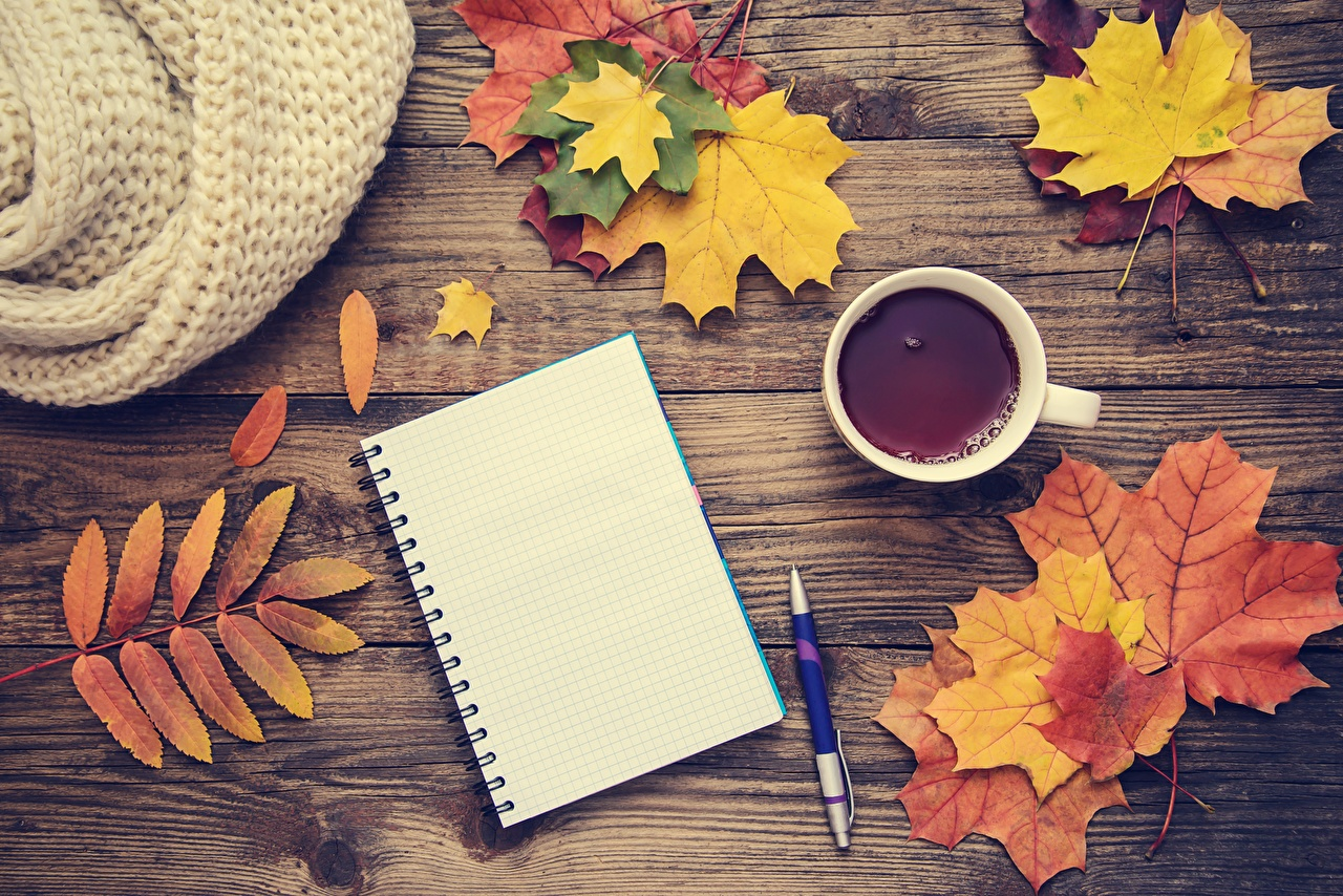 Wallpaper Ballpoint pen Notepad Maple Tea Autumn Template greeting card Wood planks acer boards
