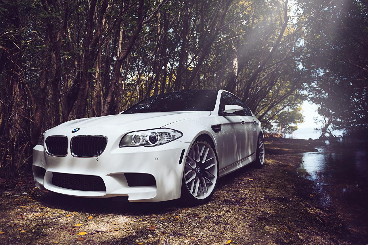 Desktop Wallpapers BMW m5 f10 White Cars Headlights auto automobile