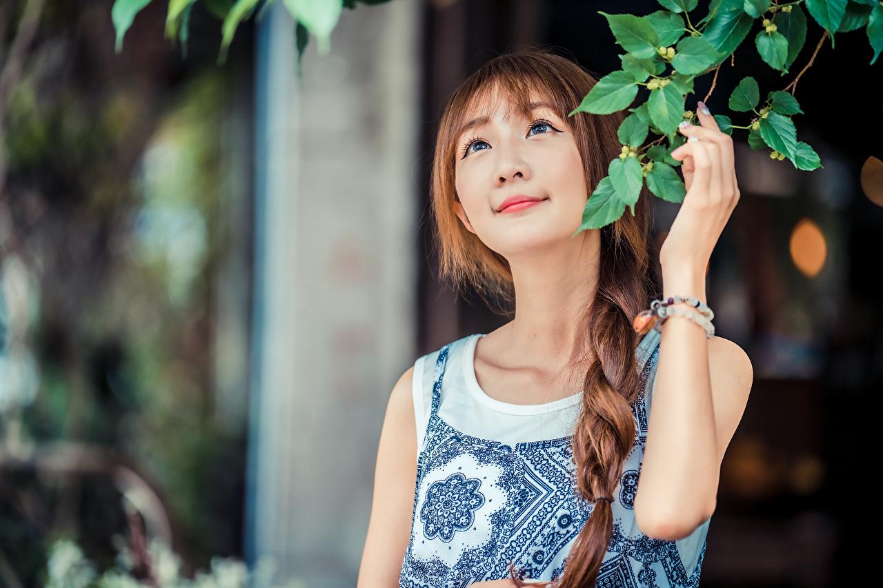 Fotos Zopf unscharfer Hintergrund Mädchens Asiaten Ast Hand Bokeh junge frau junge Frauen Asiatische asiatisches