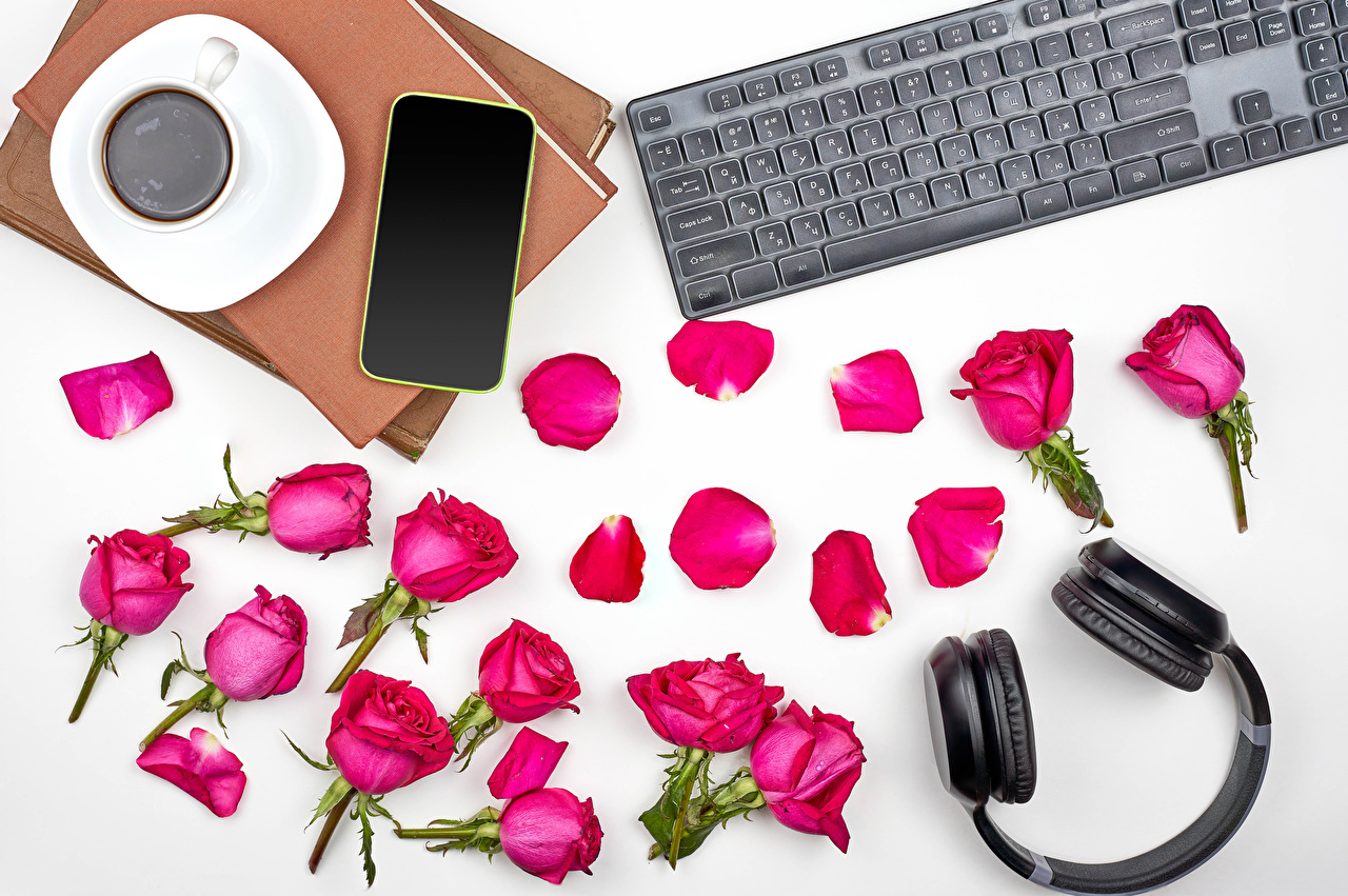 Desktop Wallpapers Keyboard Headphones smartphones Red Roses Coffee Petals flower Cup Food books White background Smartphone rose Flowers Book