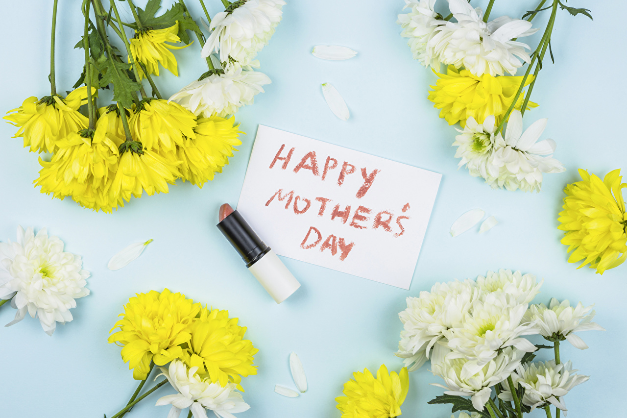 Images Mother's Day English Lipstick flower lettering Chrysanthemums Mums text Flowers Chrysanths Word - Lettering