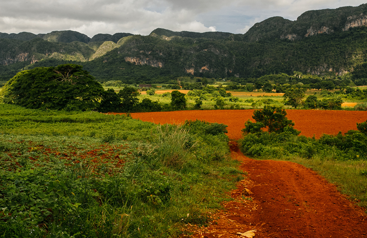 Wallpapers Cuba Pinar del Rio Nature Mountains Fields Grass