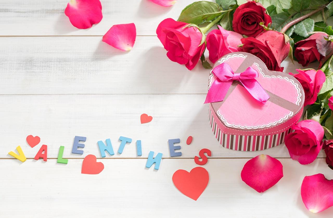 Fotos von Valentinstag englisches Herz Rosen Blütenblätter Wort Blumen Englisch englische englischer Rose kronblätter text Blüte