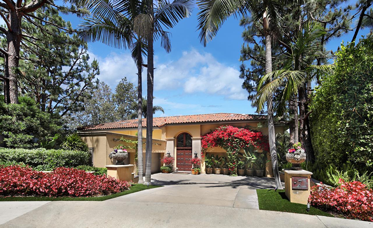 Desktop Wallpapers USA Newport Beach Palms Mansion Houses Shrubs Cities Design palm trees Bush Building