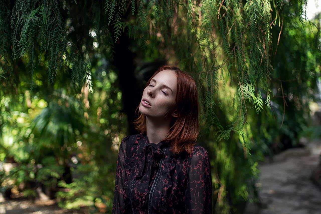 Foto Braune Haare Thaisia Shipilova, Maxim Guselnikov Mädchens Braunhaarige junge frau junge Frauen