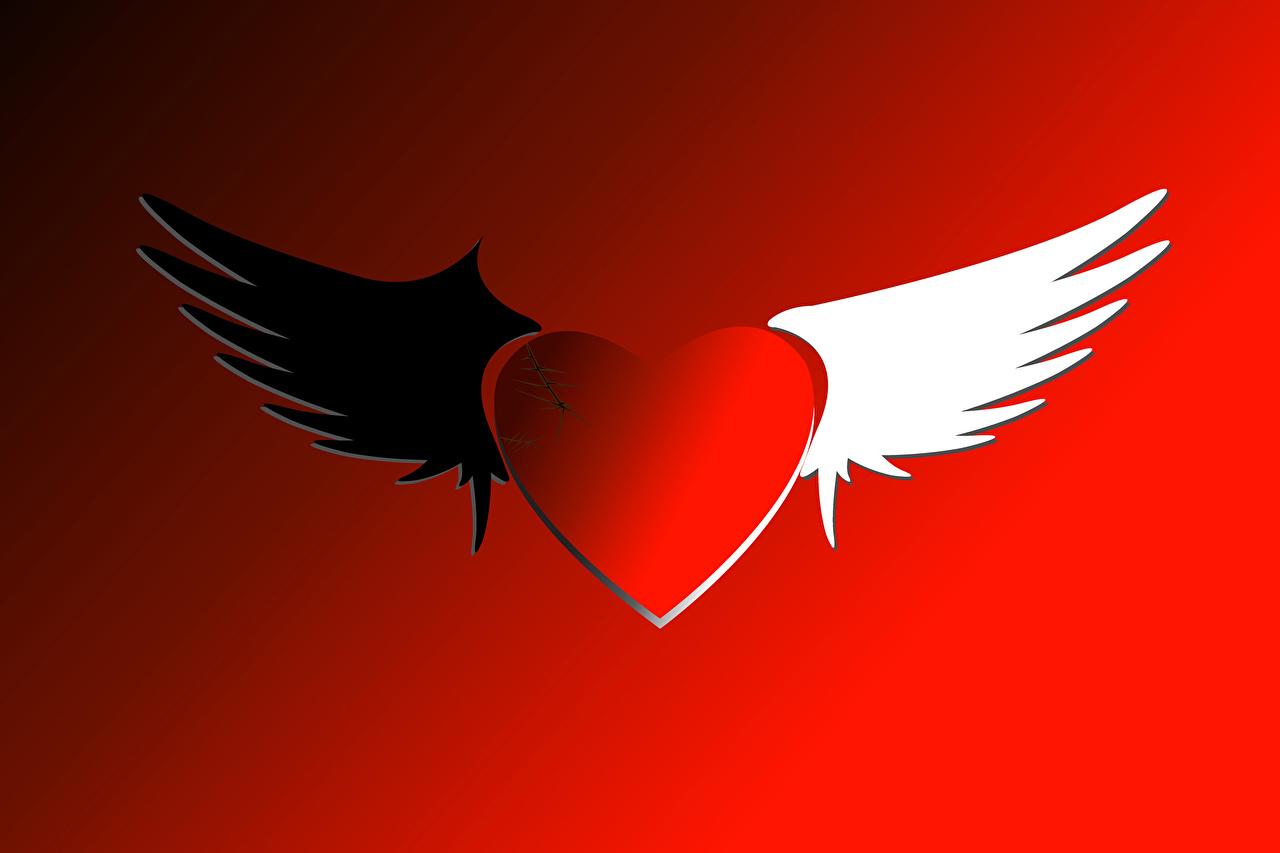 Dia dos Namorados Fundo vermelho Coração Asa