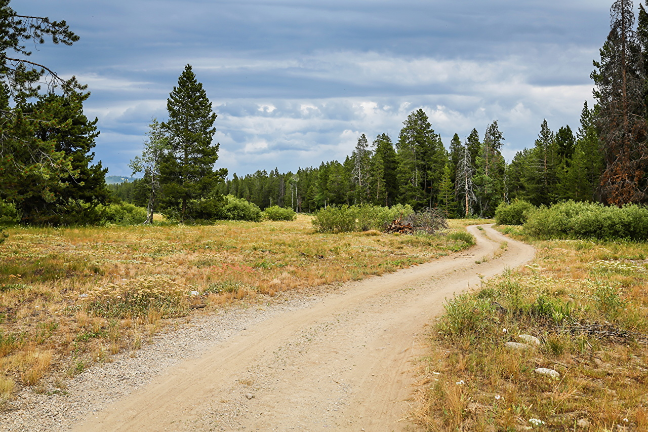 Wallpaper USA Grand Teton Nature park Roads forest Parks Forests