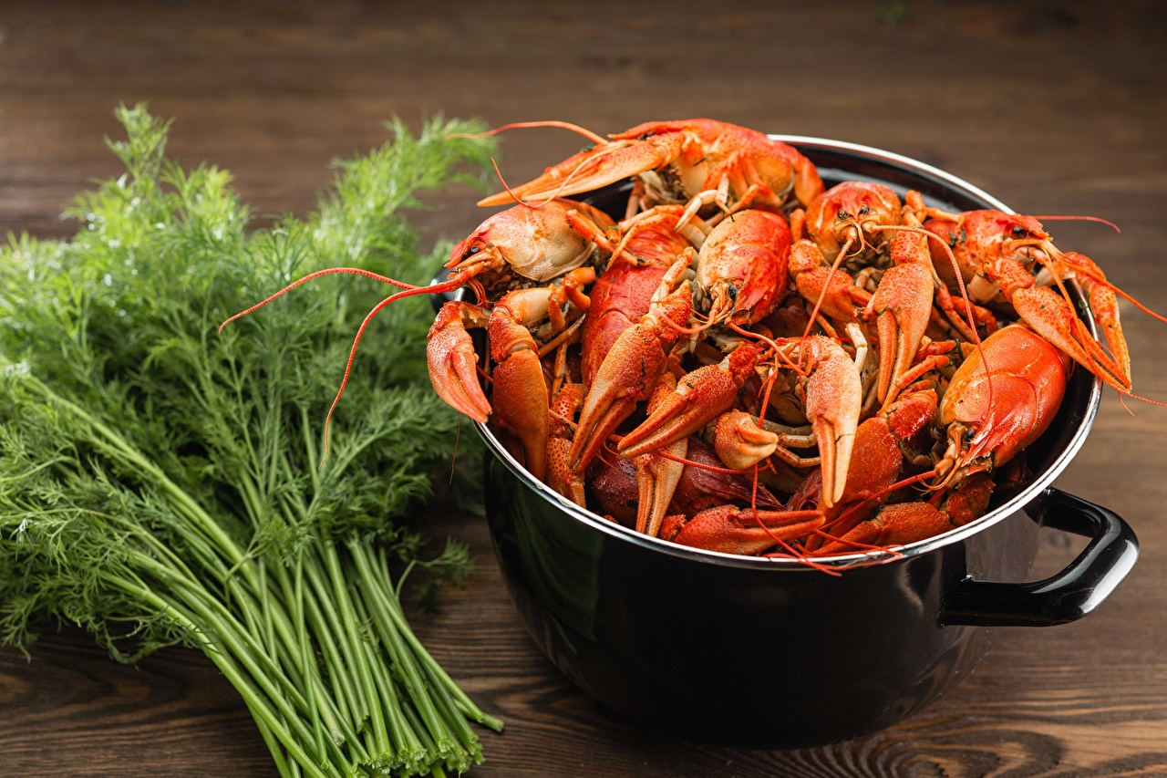 Pictures Dill Crayfish Food