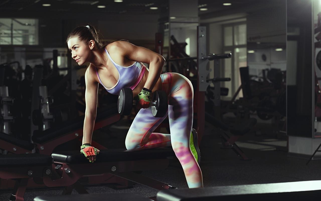Fotos von Körperliche Aktivität Fitness Sport Hanteln Mädchens Trainieren Hantel junge frau sportliches junge Frauen