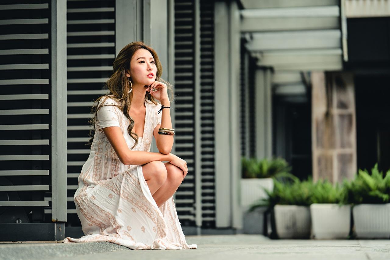 Foto Braunhaarige unscharfer Hintergrund Mädchens Asiatische Hand sitzen Kleid Braune Haare Bokeh junge frau junge Frauen Asiaten asiatisches sitzt Sitzend