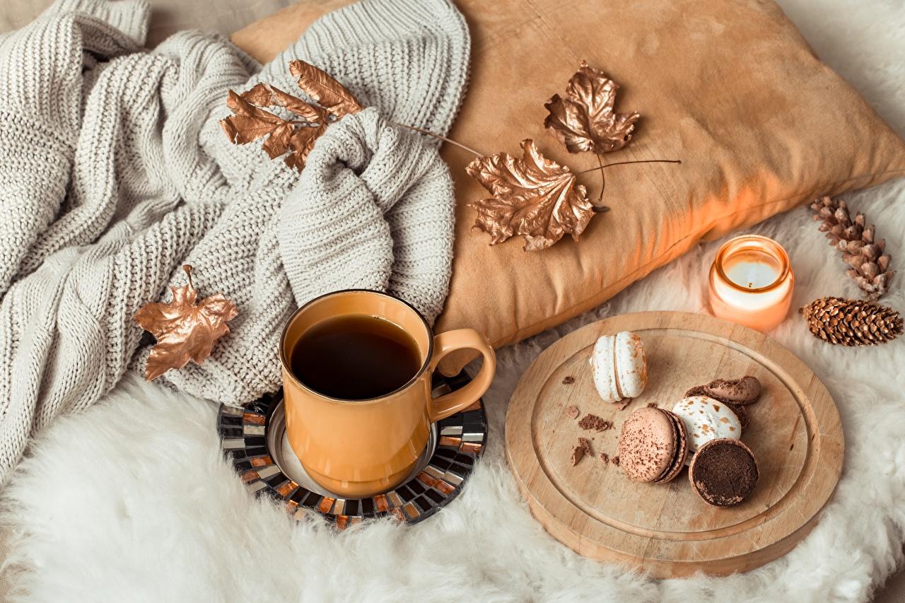 Fotos Macaron Blattwerk Kaffee Sweatshirt Kekse Becher Zapfen das Essen Stillleben macarons Blatt Lebensmittel